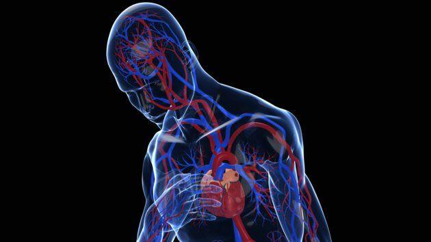 Insuficiencia cardiaca se esconde tras síntomas comunes