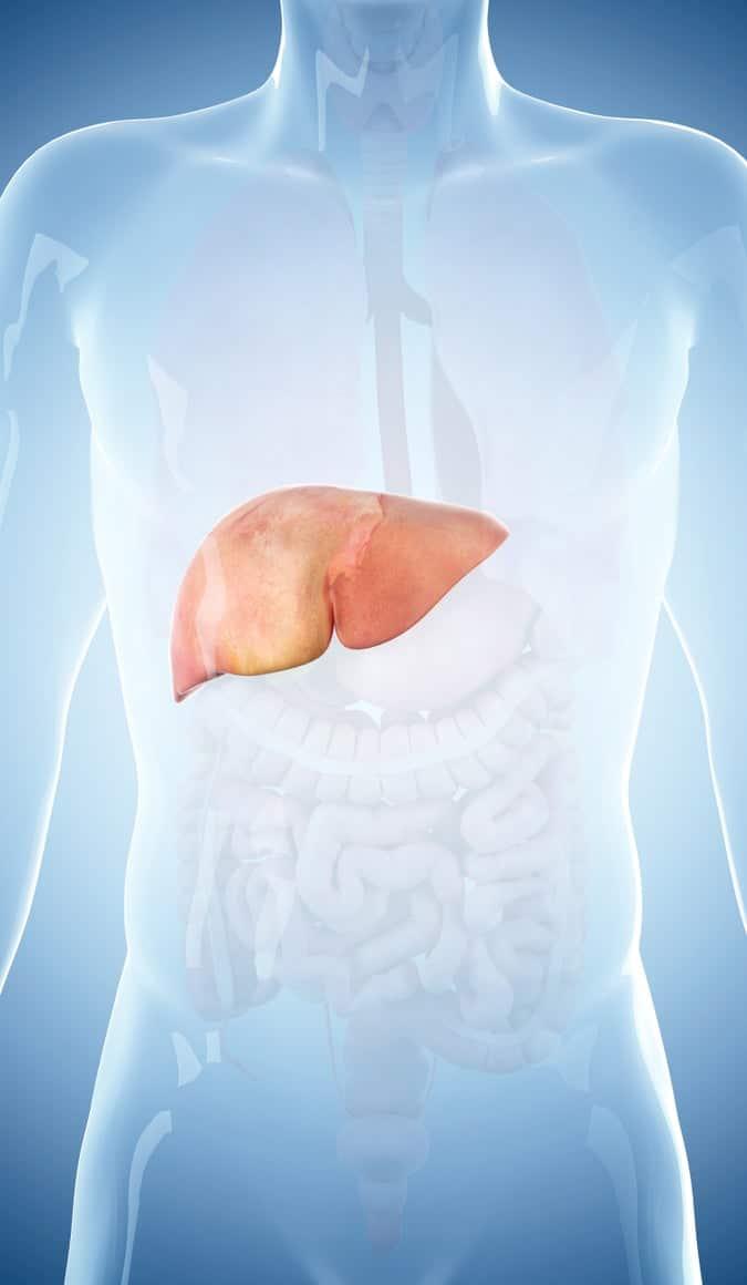 Hepatitis, un virus silente y altamente contagioso